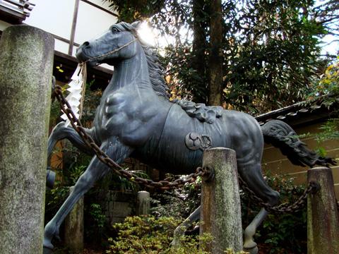 粟田神社の馬