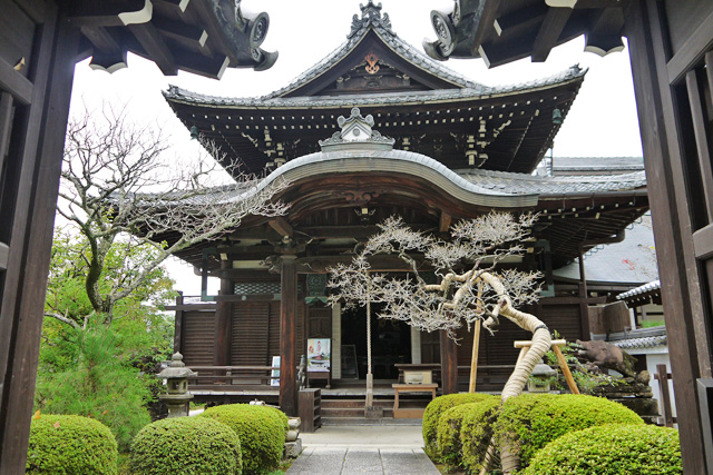 南禅寺聴松院の写真
