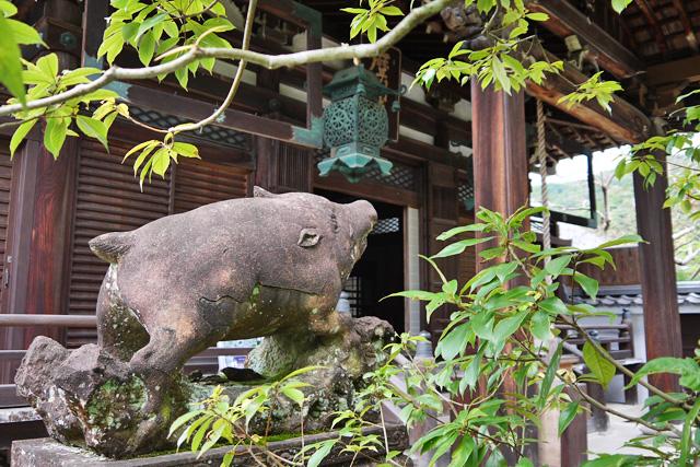 南禅寺聴松院のイノシシ写真