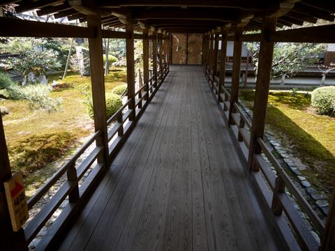 大覚寺のうさぎ