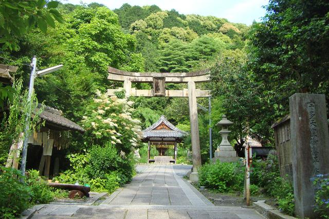 大豊神社の写真