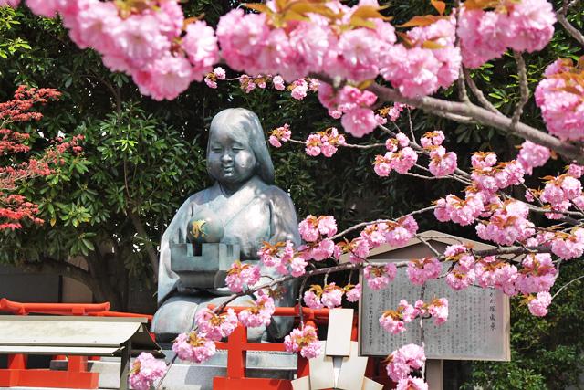 千本釈迦堂の写真