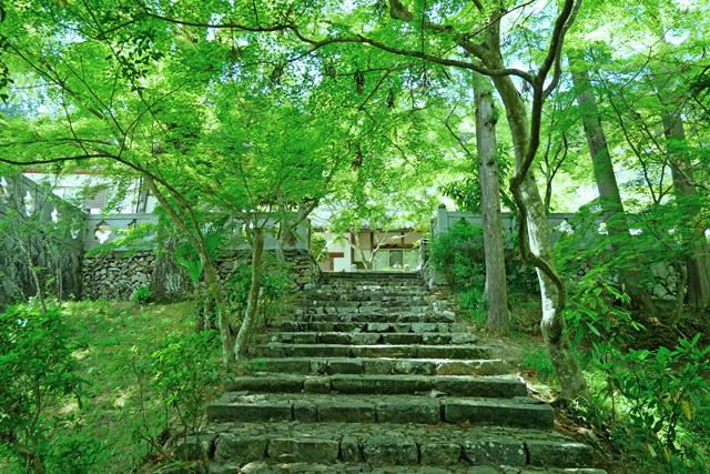 正法寺(和束町)の写真