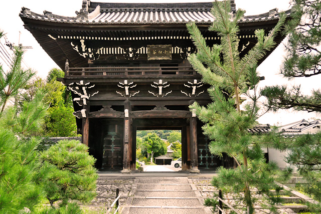 小松谷正林寺の山門の写真