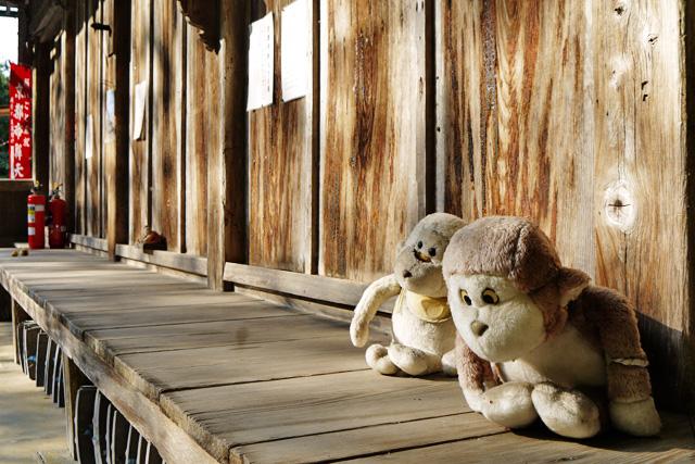 京都帝釈天の写真
